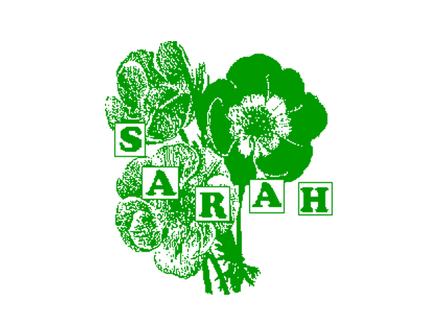 sarahrecords