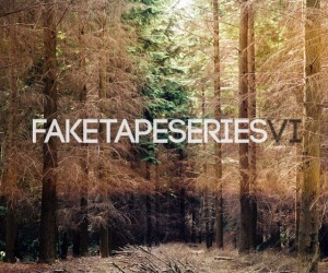 Mixtape : Fake Tape Series VI