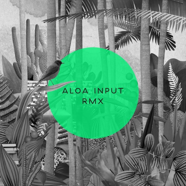 Aloa Input RMX