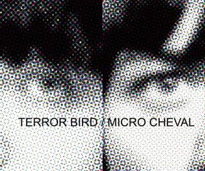 Terror Bird / Micro Cheval – Split 12″